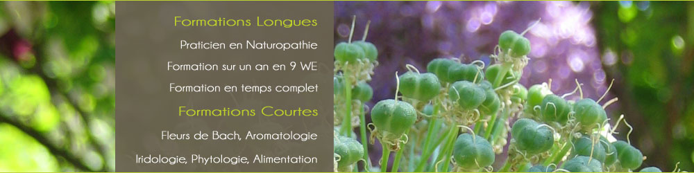 formation naturopathe toulouse